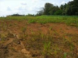 land for sale at Kuntunse