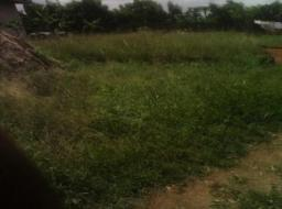 land for sale at Nsawam